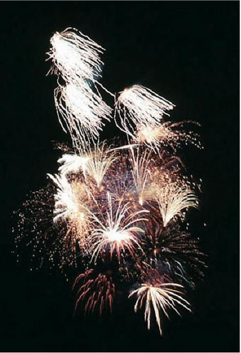 City Cancels Annual Fireworks Display