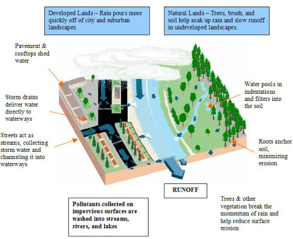 How Urbanization Affects The Water Cycle City Of Blue